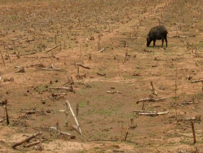 wide-spread droughts and land degredation in the west?