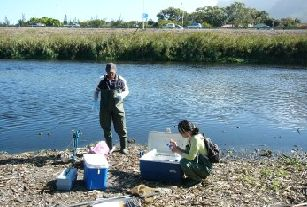 Black River testing: Pic: SA Mercury Assessment Program