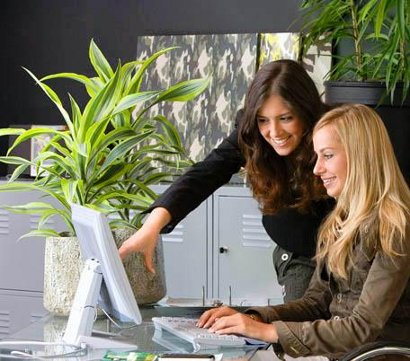 flat screen monitors, office plants, smiling workers... it's green office week: pic - green path guide