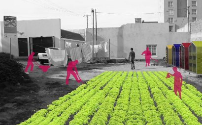 Let Us Grow, A Your Street CT Winner