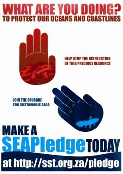 SEACC SF's SEA Pledge
